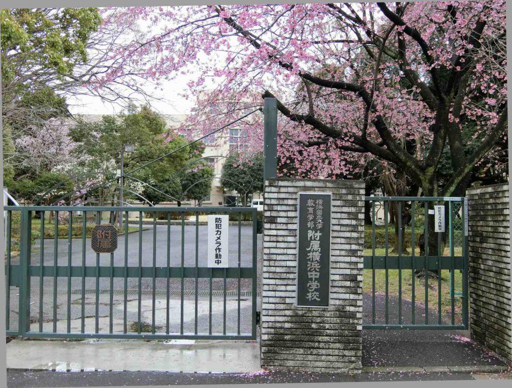 横浜国立大学教育学部附属横浜中学校