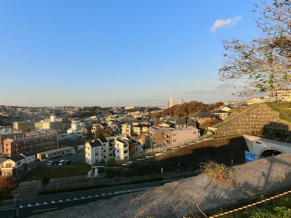 横浜市の斜面
