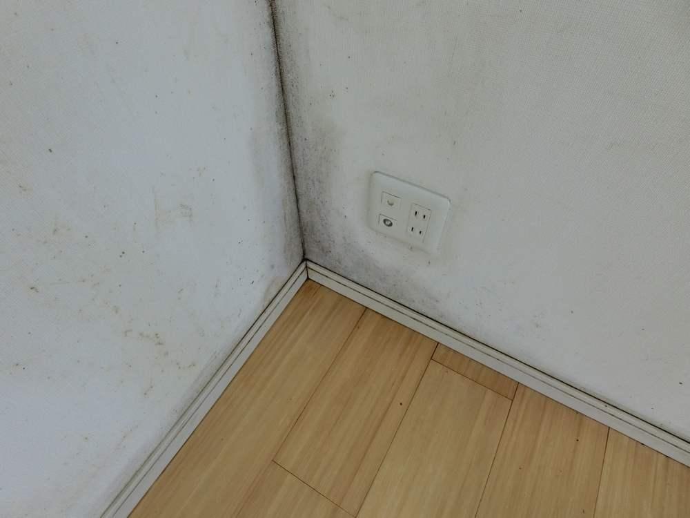 蒲田のマンションの室内
