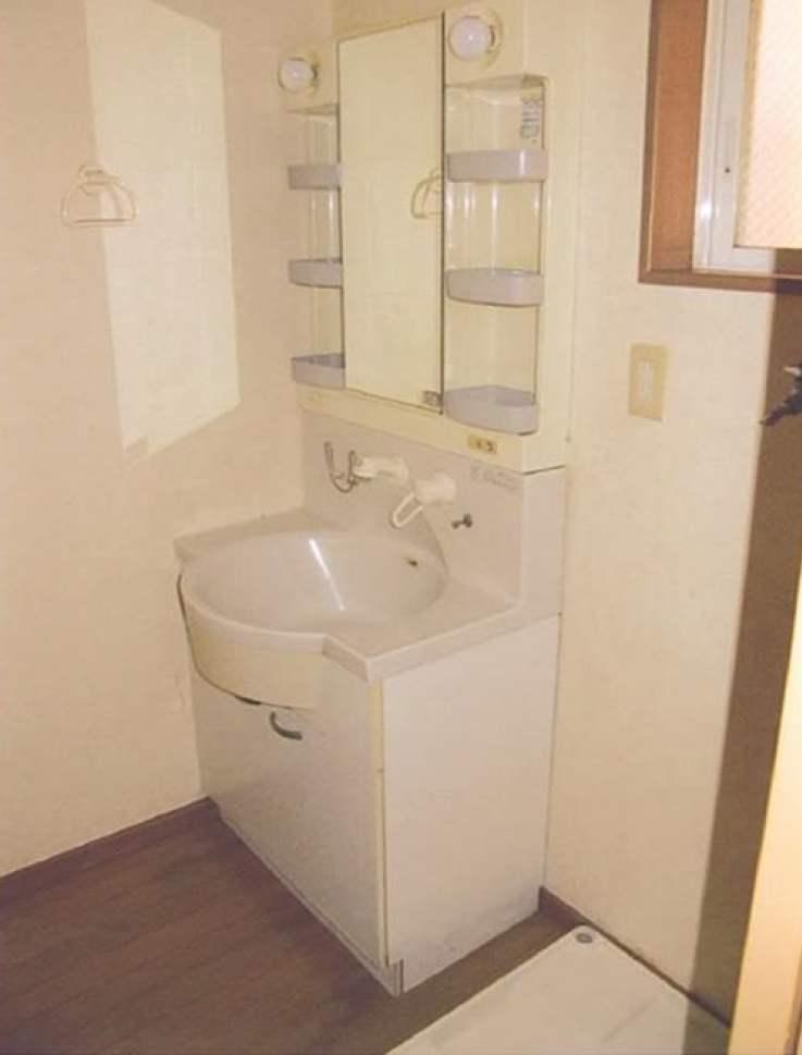 川崎区渡田山王町の戸建の洗面所